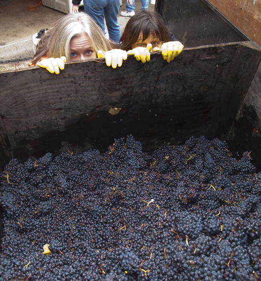 Portland Winemakers Club Members 1